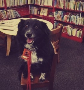 Dogs of Bookmans