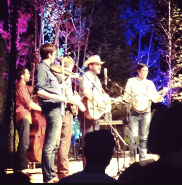 Pickin' in the Pines 2014