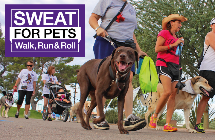 Sweat for Pets with Bookmans