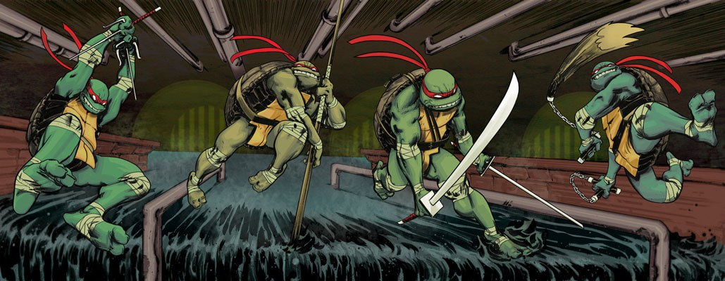Teenage Mutant Ninja Turtles Comic Frame