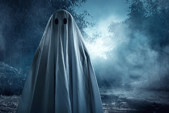 ghost, haunting, ghost costume, forest, night