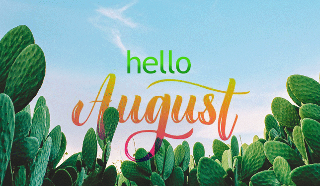 August is Sunny at Bookmans! | Bookmans Entertainment Exchange